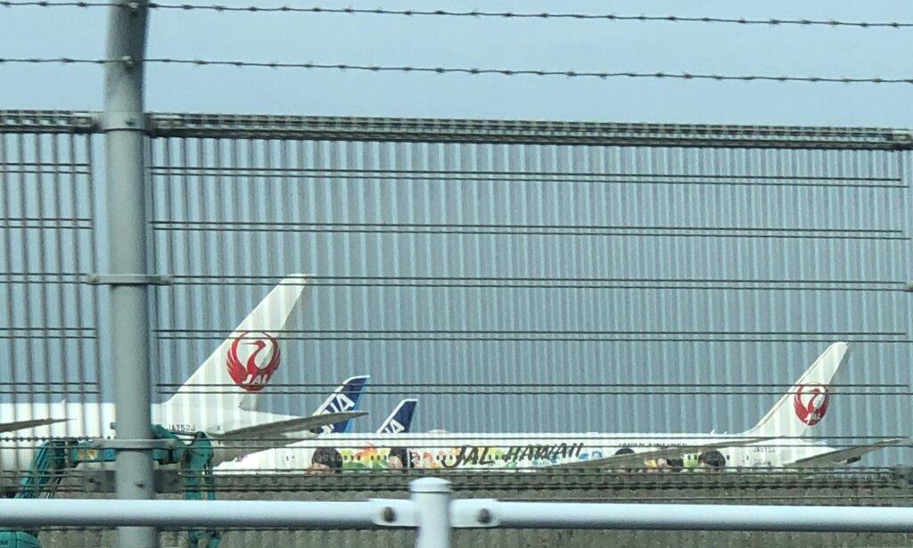 JALハワイ特別塗装機